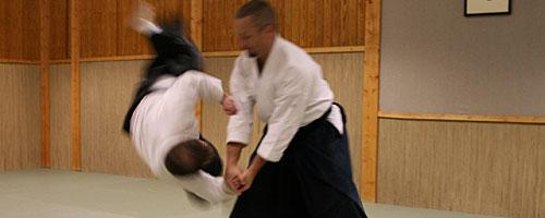iwama_takemusu_aikido